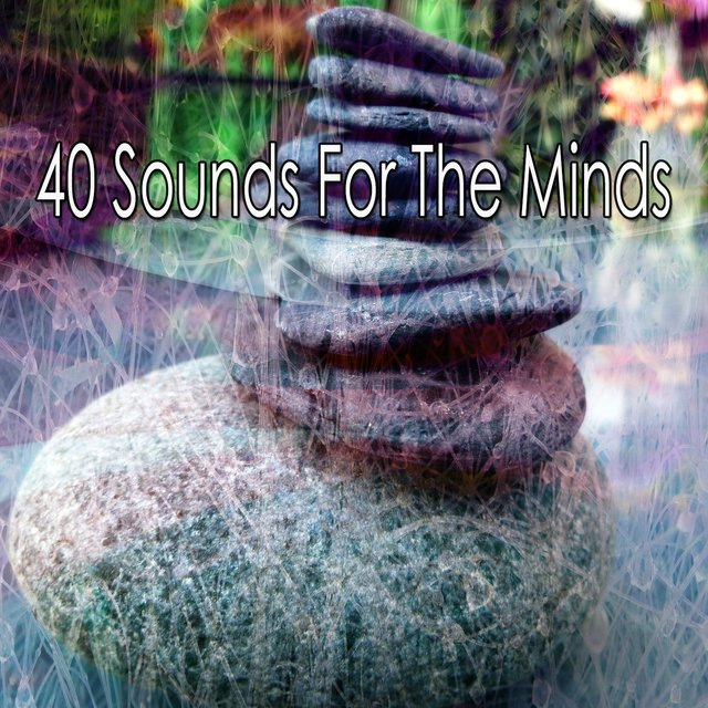 40 Sounds for the Minds