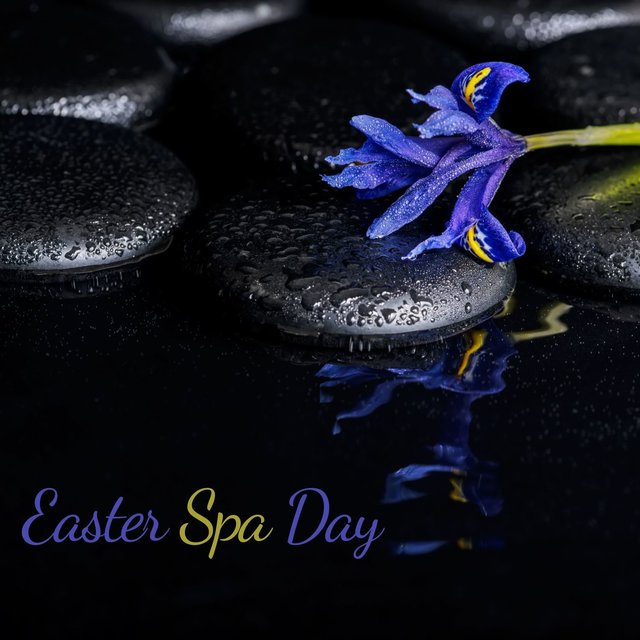 Easter Spa Day - Joyful Time of Fresh Feeling