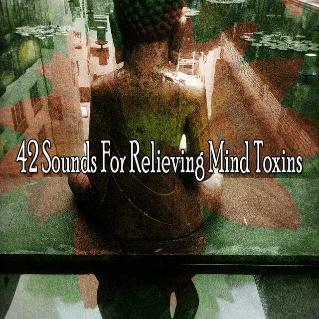 42 Sounds for Relieving Mind Toxins