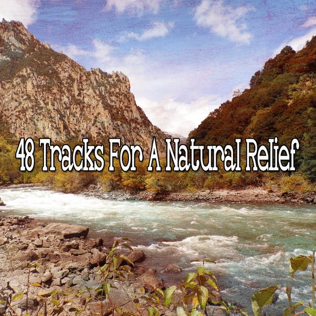 48 Tracks for a Natural Relief
