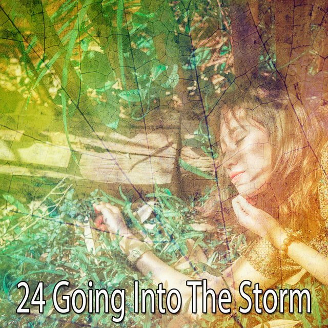24 Going Into the Storm