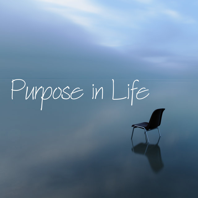 Purpose in Life: Balance and Peace Through Meditation