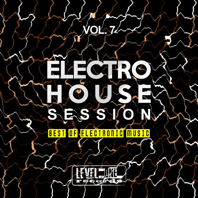 Electro House Session, Vol. 7 (Best Of Electronic Music)
