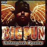 Brave In The Heart Big Pun featuring Terror Squad