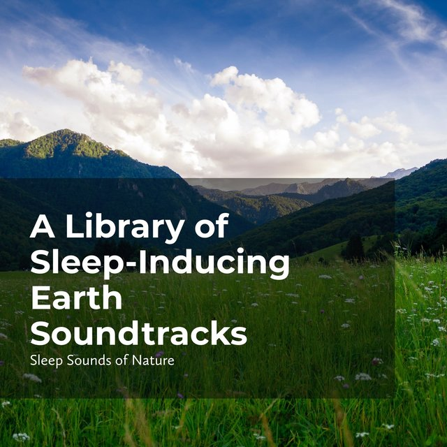 Sleep-Inducing Earth Soundtracks
