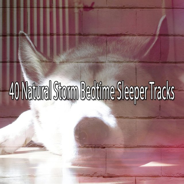 40 Natural Storm Bedtime Sleeper Tracks