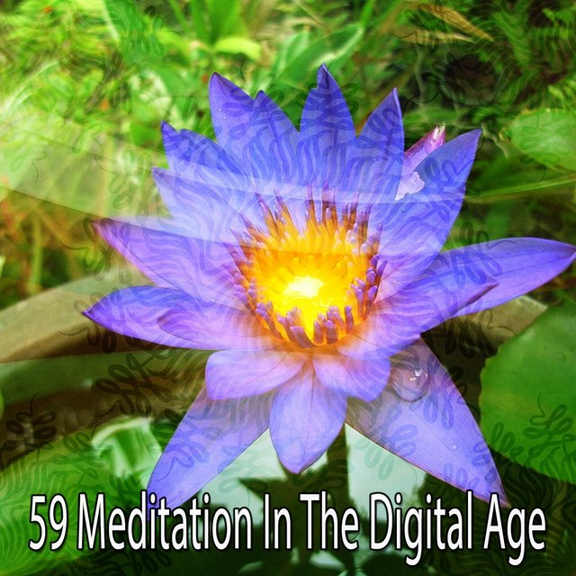 59 Meditation in the Digital Age