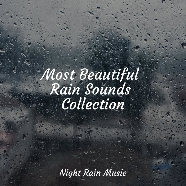 Most Beautiful Rain Sounds Collection