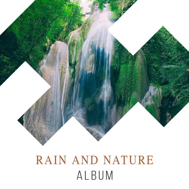 Relaxing International Rain and Nature Album