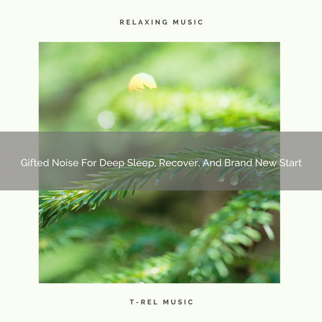 Gifted Noise For Deep Sleep, Recover, And Brand New Start