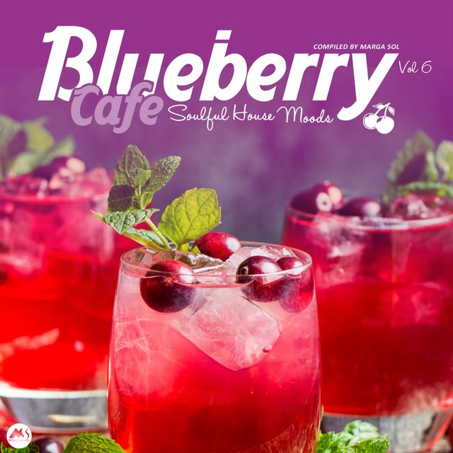 Blueberry Cafe Vol 6: Soulful House Moods