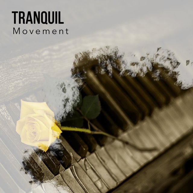 Tranquil Zen Movement