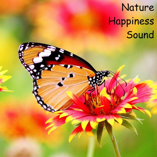 Nature Happiness Sound