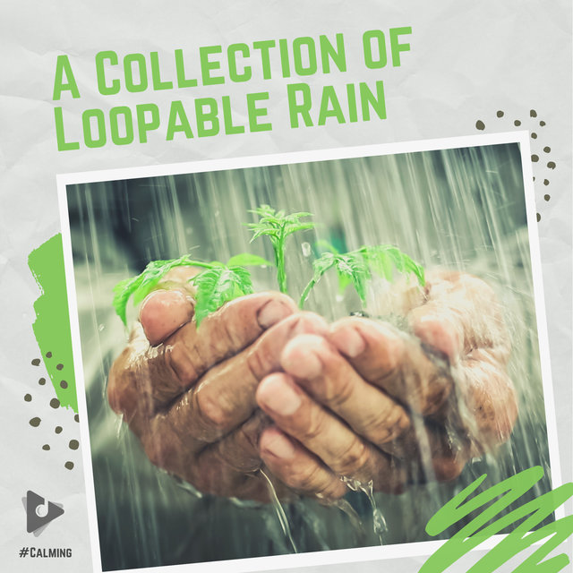 A Collection of Loopable Rain