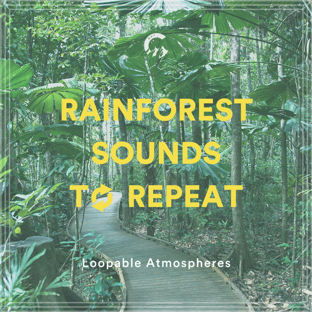 Rainforest Sounds To Repeat