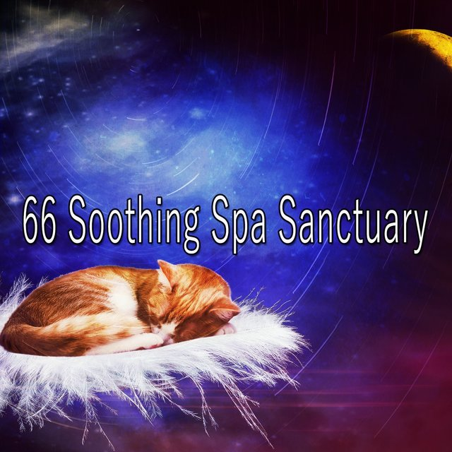 66 Soothing Spa Sanctuary