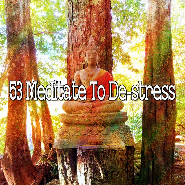 53 Meditate to De Stress