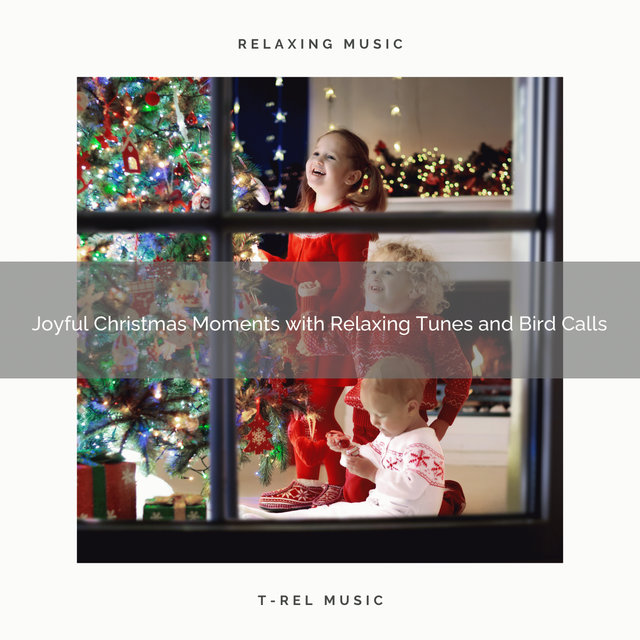 Joyful Christmas Moments with Relaxing Tunes and Bird Calls