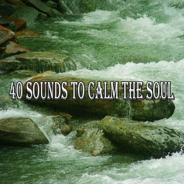 40 Sounds to Calm the Soul