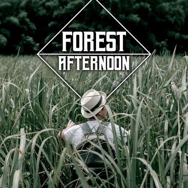 Forest Afternoon - The Most Relaxing Sounds of Nature That are the Perfect Background for Rest, Sleep, Meditation or Yoga