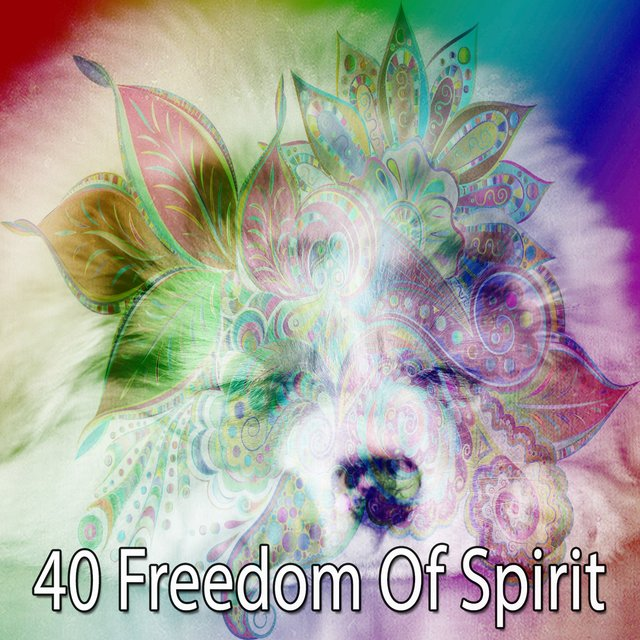 40 Freedom of Spirit