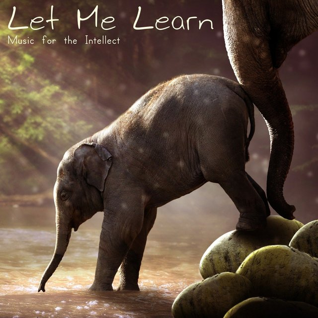 Let Me Learn (Music for the Intellect)