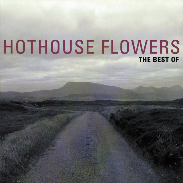 The Best Of Hothouse Flowers
