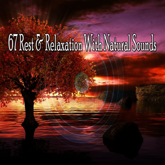 67 Rest & Relaxation with Natural Sounds