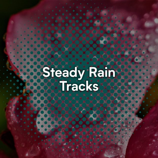 Relaxing Steady Rain & Water Tracks