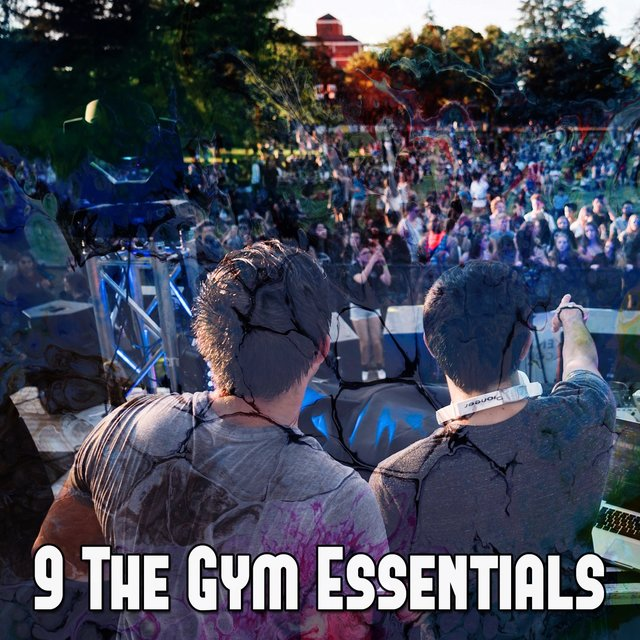 9 The Gym Essentials