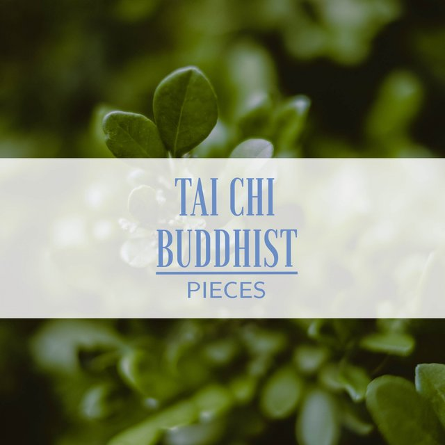 Tai Chi Buddhist Pieces