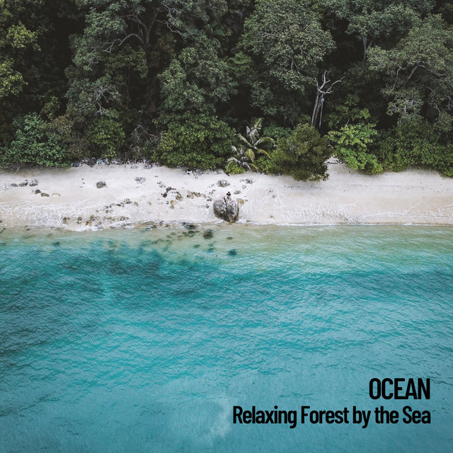 Ocean: Relaxing Forest by the Sea
