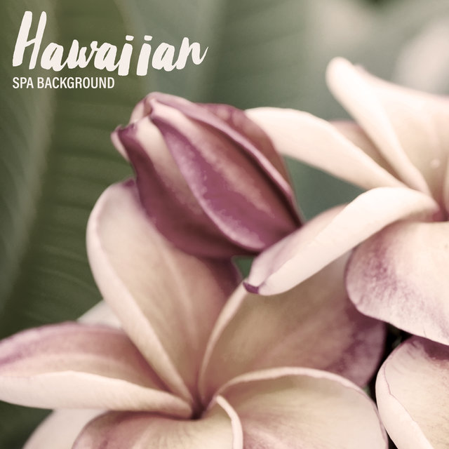 Hawaiian Spa Background - Traditional Ukulele Melodies That Will Take You Straight to a Tropical Beach, Massage Session, Flowers, Essential Oils, Beauty Time, Wellness Oasis