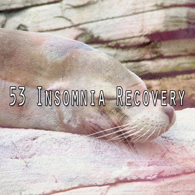 53 Insomnia Recovery