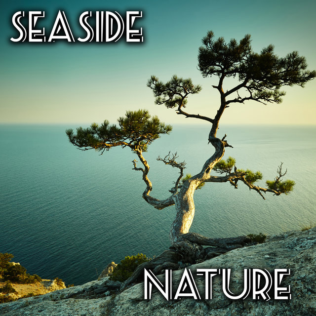 Seaside Nature – Close to Nature, Healing Therapy, Keep Calm with Nature Sounds, Nature Sounds Relaxation