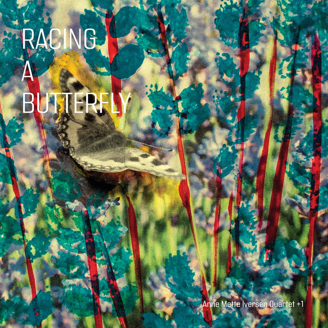 Cover art for album Racing a Butterfly by Anne Mette Iversen Quartet