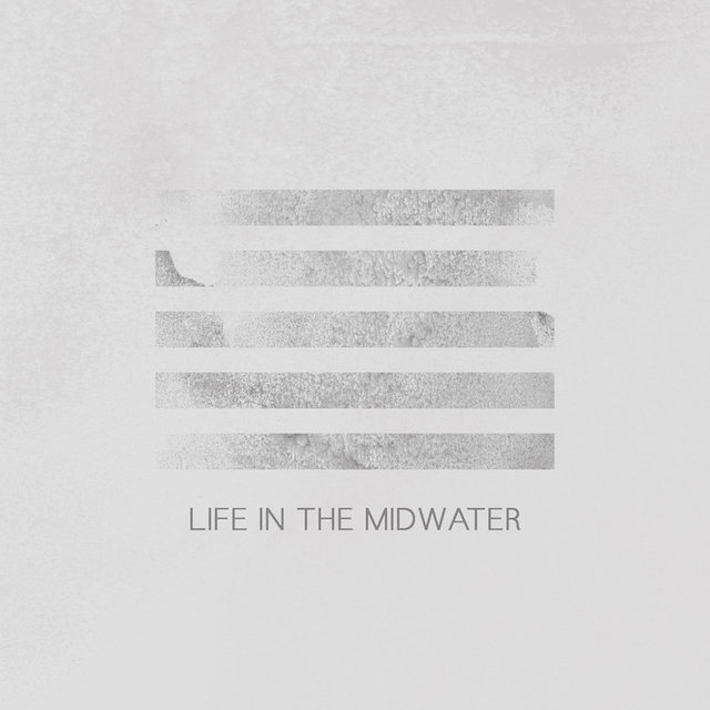 Life in the Midwater