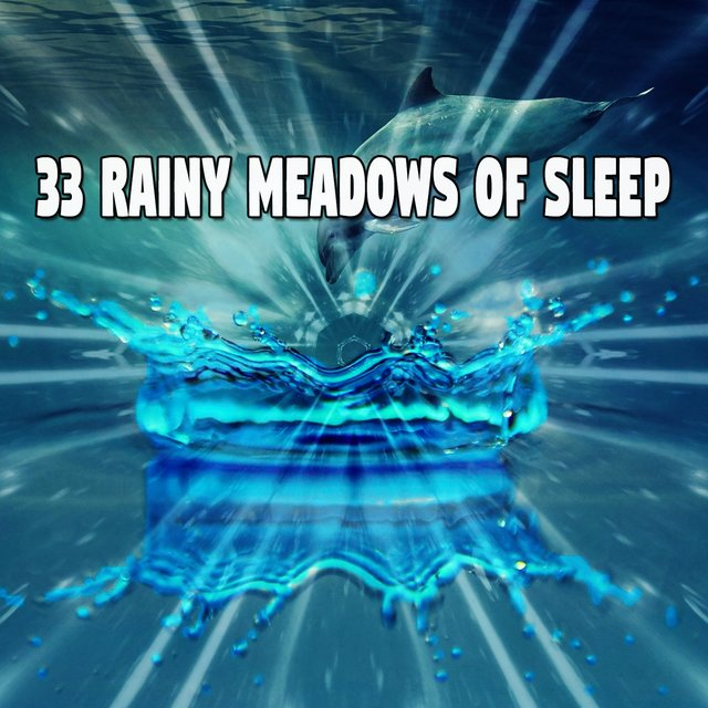 33 Rainy Meadows of Sle - EP