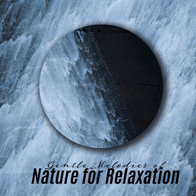 Gentle Melodies of Nature for Relaxation