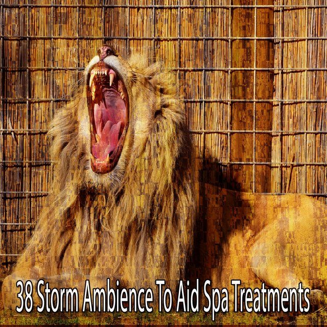 38 Storm Ambience to Aid Spa Treatments