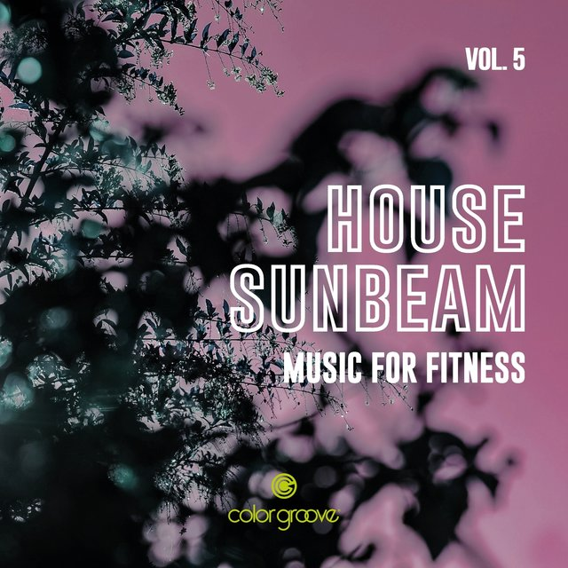 House Sunbeam, Vol. 5 (Music For Fitness)