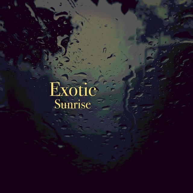 # 1 Album: Exotic Sunrise