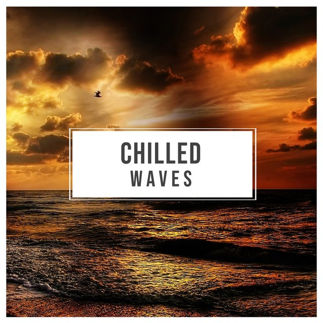 # 1 Album: Chilled Waves