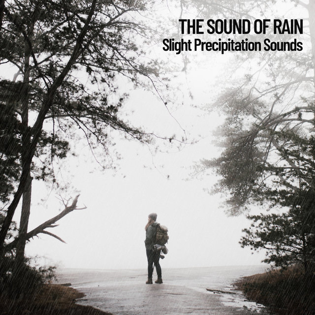 The Sound of Rain: Slight Precipitation Sounds