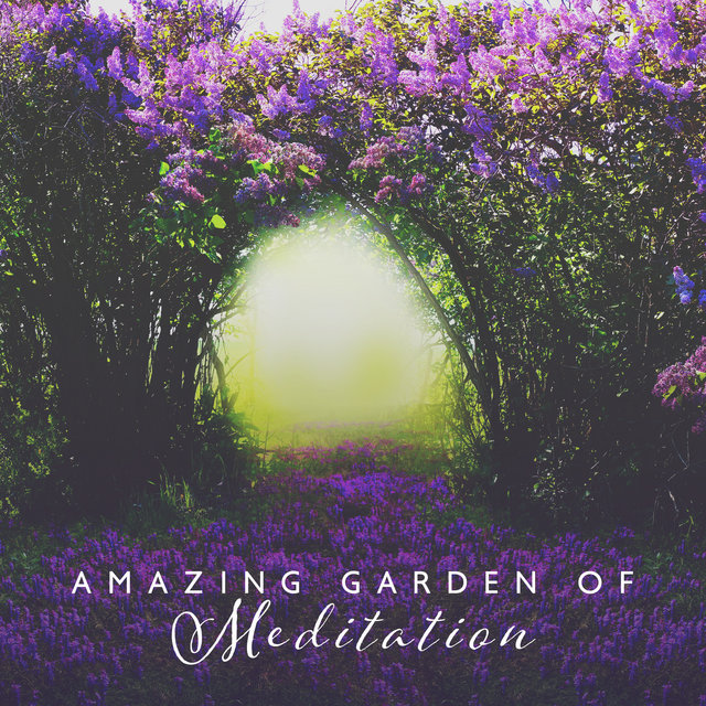 Amazing Garden of Meditation: Nature Sounds for Spiritual Awakening & Yoga Music