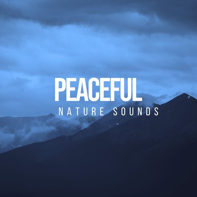 # Peaceful Nature Sounds