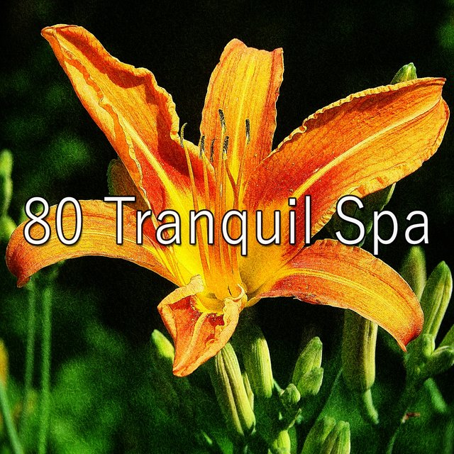 80 Tranquil Spa