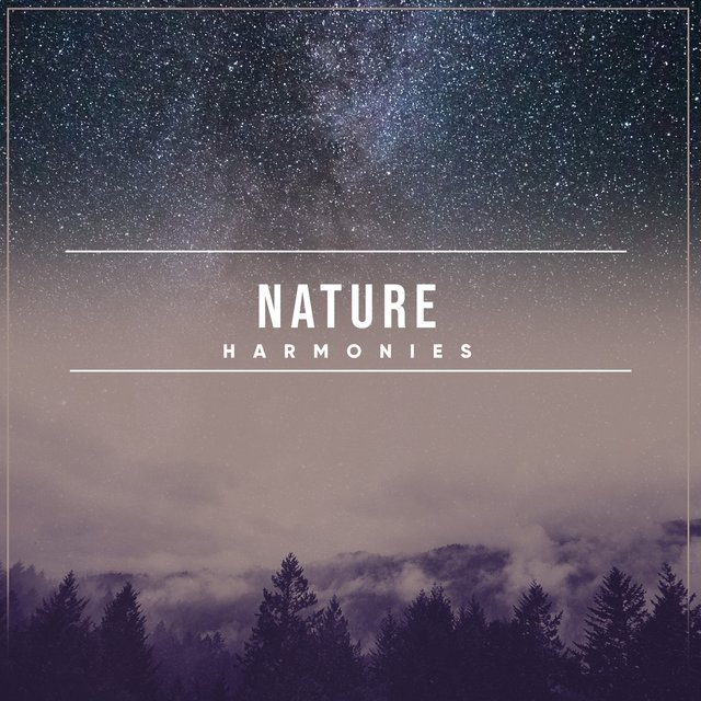 Soothing Sleepy Nature Harmonies