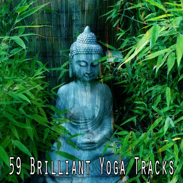 59 Brilliant Yoga Tracks