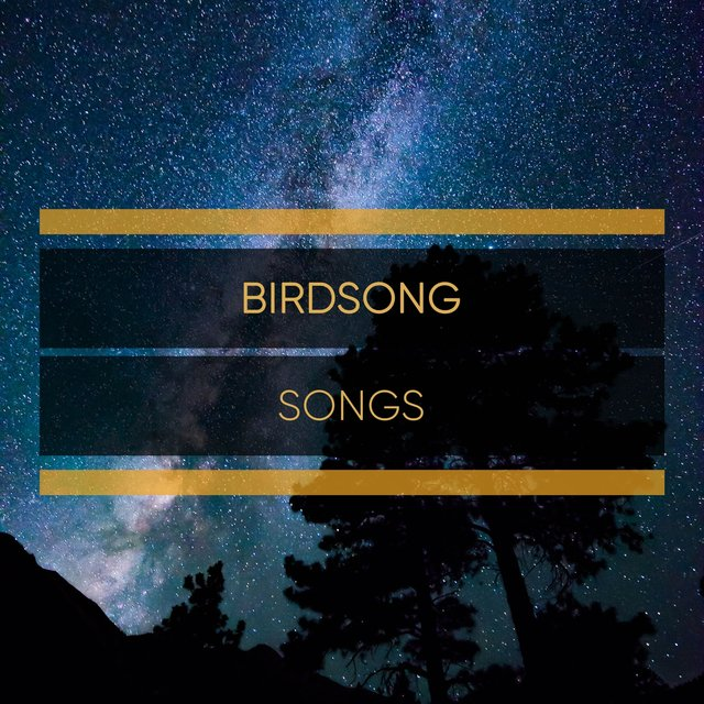 Flowing Sleepy Birdsong Songs